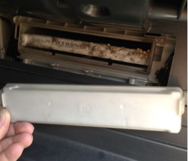 Снятая крышка и старый воздушный фильтр салона