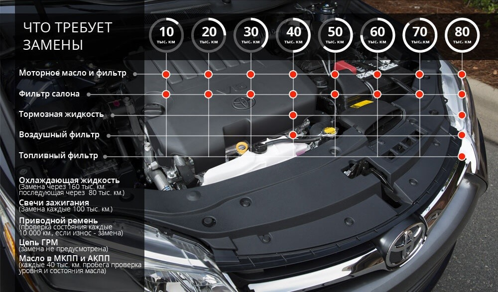 Инфографика технического обслуживания Тойота Камри 40