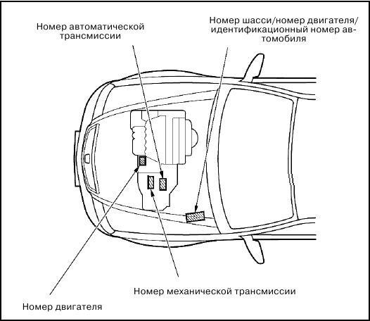 Схематическое расположение номера двигателя