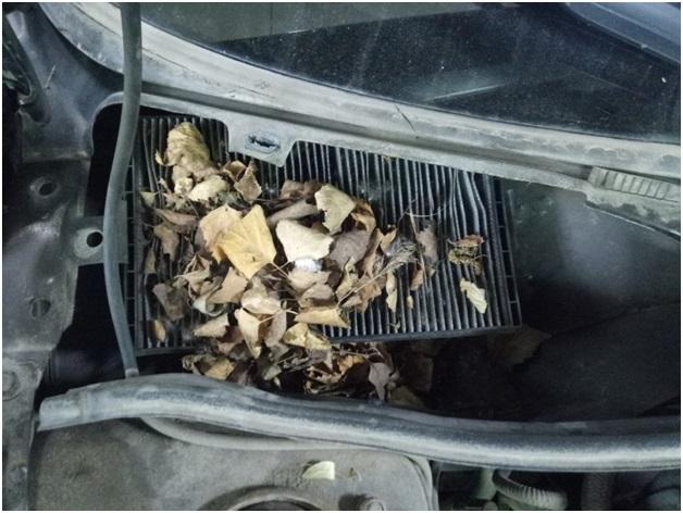 Забивание салонного фильтра листвой